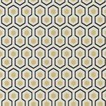 66/8056.CS Hicks' Hexagon Black/G by Cole & Son